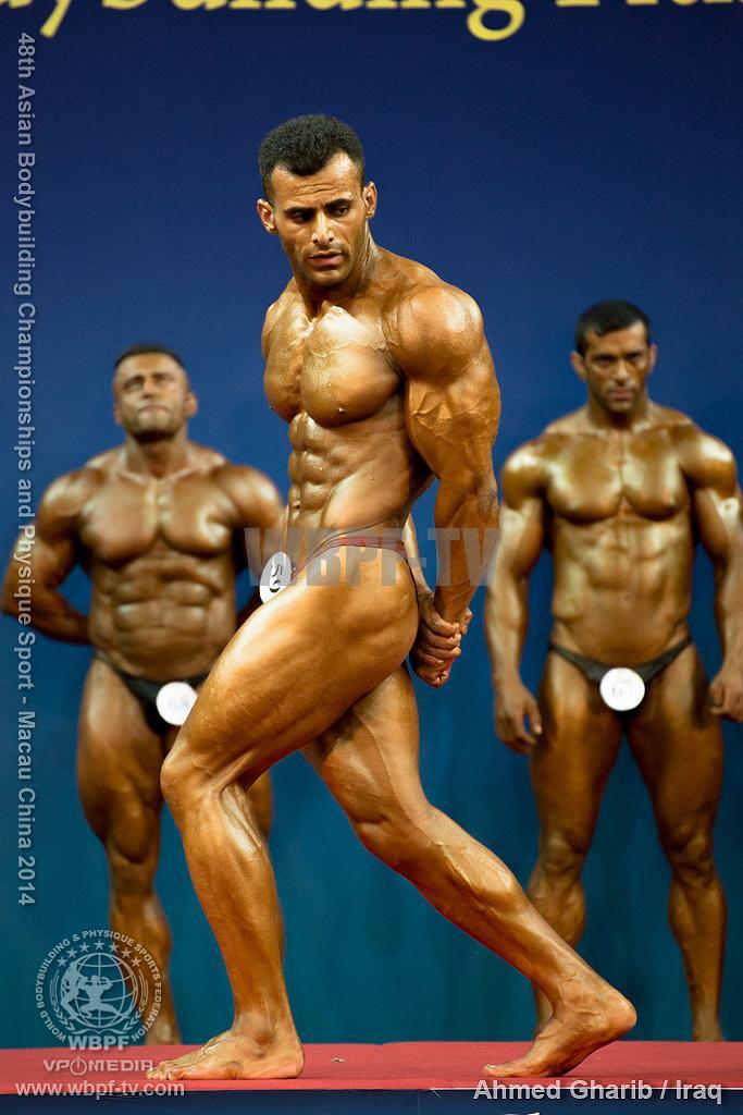 Ahmed Gharib1