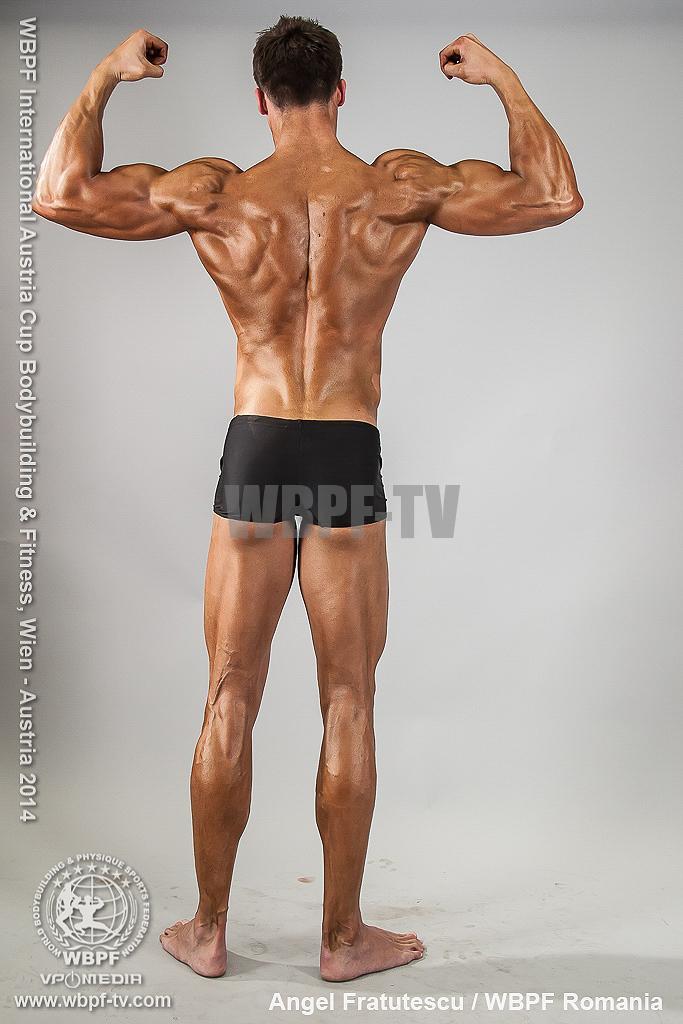 Angel Fratutescu 21