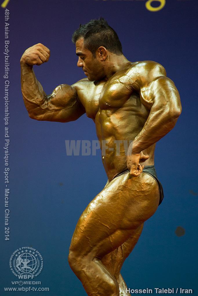 Hossein Talebi17