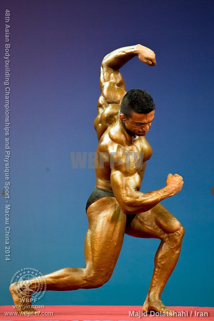 Majid Dolatshahi8